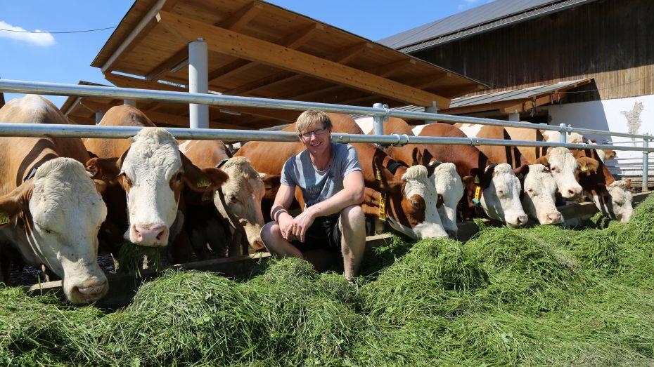 Sebastian Lackner aus Tittmoning stellt seinen Hof auf Heumilch-Erzeugung um. (Foto: A. Schuchardt)