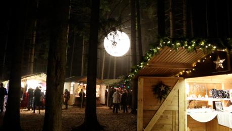 Bei der Waldweihnacht spielt der Wald die Hauptrolle. (Bild: A. Schuchardt)