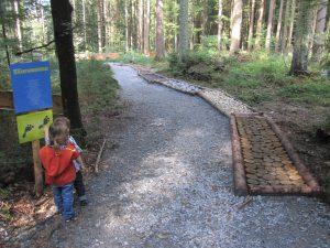 Bodenmais im Bayerischen Wald bietet zahlreiche Attraktionen, wie hier der Kinderwanderweg Ameisenstraße. (Bild: avd)