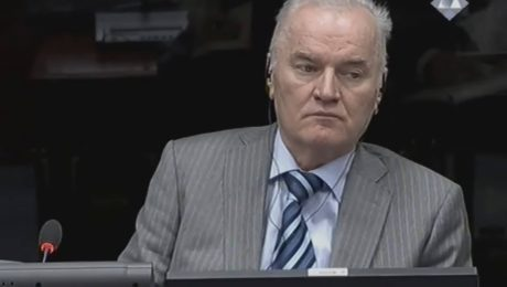 Lebenslange Haft für Mladic