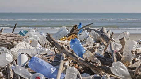 Gegen eine Welt aus Plastik