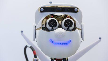 Kluge Chefs für Roboter