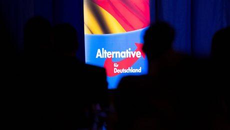Die deutsche Brexit-Partei